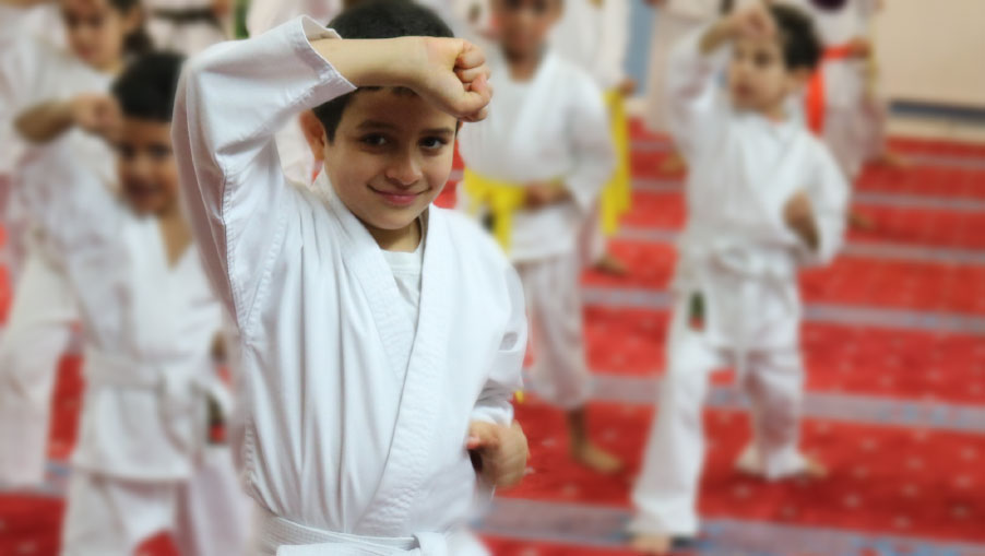 Karate Club for kids and adults